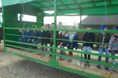 Year 2 Rushall Farm